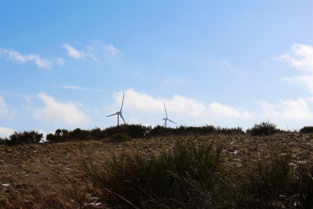 Windräder in Sicht