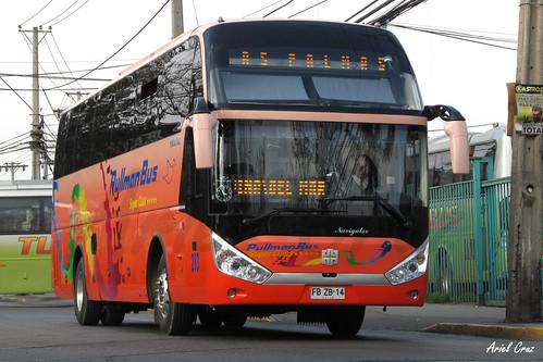 Pullman Bus en Santiago | Zhongtong Navigator LCK6137H / FBZB14