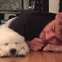 #dogalize Neymar e il suo amore per Poker, il gioco e il suo cane https://t.co/oXz88Va8kQ #dogs #cats #pets https://t.co/JzCeKzlosO, dogalize