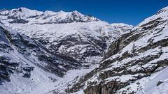 Podejście lasem do schroniska Rif. Vittorio Emanuelle II  2735m. Dolina Valsavarenche.