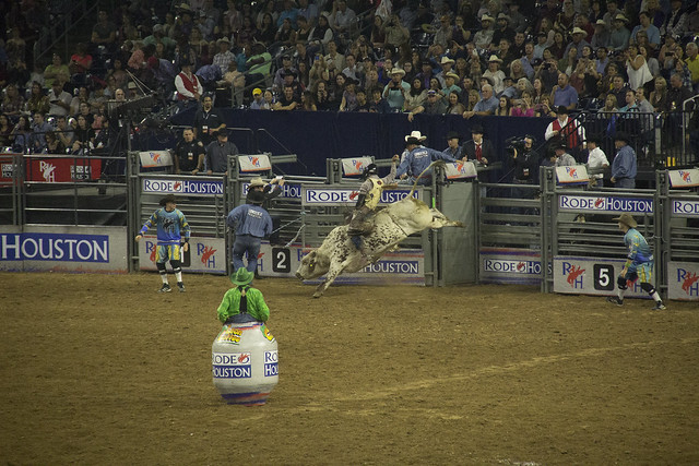 Rodeo and Concert2_83
