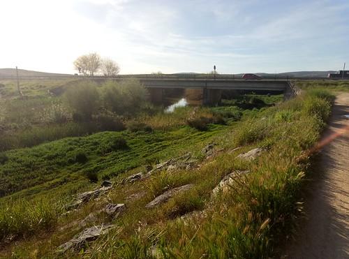 Río Siete Arroyos. Villaverde del Río (Sevilla).