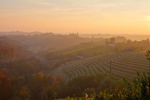slovenia jeruzalem sunset glow vineyards wineries landscape haze fog golden fall autumn beautiful gorgeous canon 7d 1635mm hills