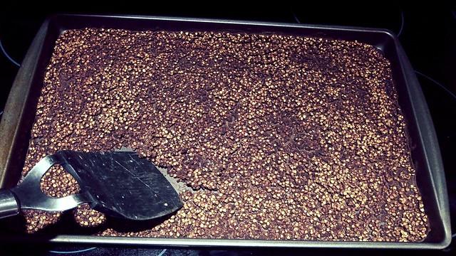 Homemade Cocoa Crispies8