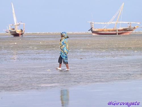 Zanzibar bassa marea