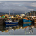 Mull 2013 : Tobermory Harbour by -terry-