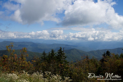 Cruising the Smokies
