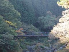 Hatonosu Valley @ Ootama Walking Trail @ From Hatonosu to Shiromaru Dam