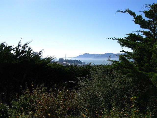 W oddali Golden Gate Bridge