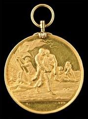 hms nepean medal