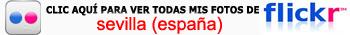 Haz clic aquí para ver mi galería fotográfica completa de Sevilla en Flickr Catedral de Sevilla, sepulcro de la historia de américa - 11121272865 a5d535f087 o - Catedral de Sevilla, sepulcro de la historia de américa