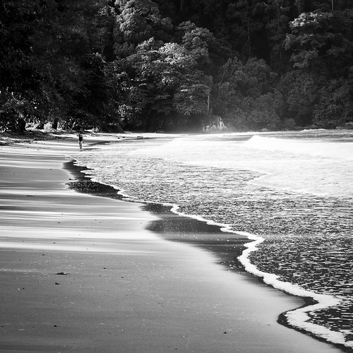 ocean morning trees sea people bw seascape reflection beach water monochrome sunrise landscape paul island mono blackwhite sand asia southeastasia details pangkor earlymorning textures malaysia tropical rays sunrays mullins beachscape perambulation walkonthebeach 马来西亚 paulmullins canon5dii