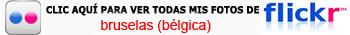 Manneken Pis de Bruselas: Haz clic aquí para ver mi galería completa de fotos de Bruselas en Flickr Manneken Pis de Bruselas - 11407084446 74a2a4ffa1 o - ¿ Por qué es tan famoso el Manneken Pis de Bruselas ?