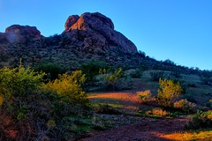 Papago, where the papa dads go