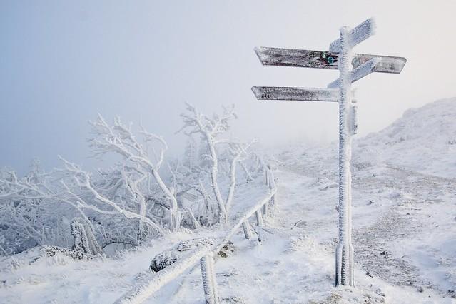 GeraldGrote - Wegweiser im Schnee