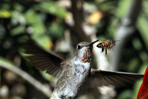 143509-1.jpg by Robert W Gilcrease