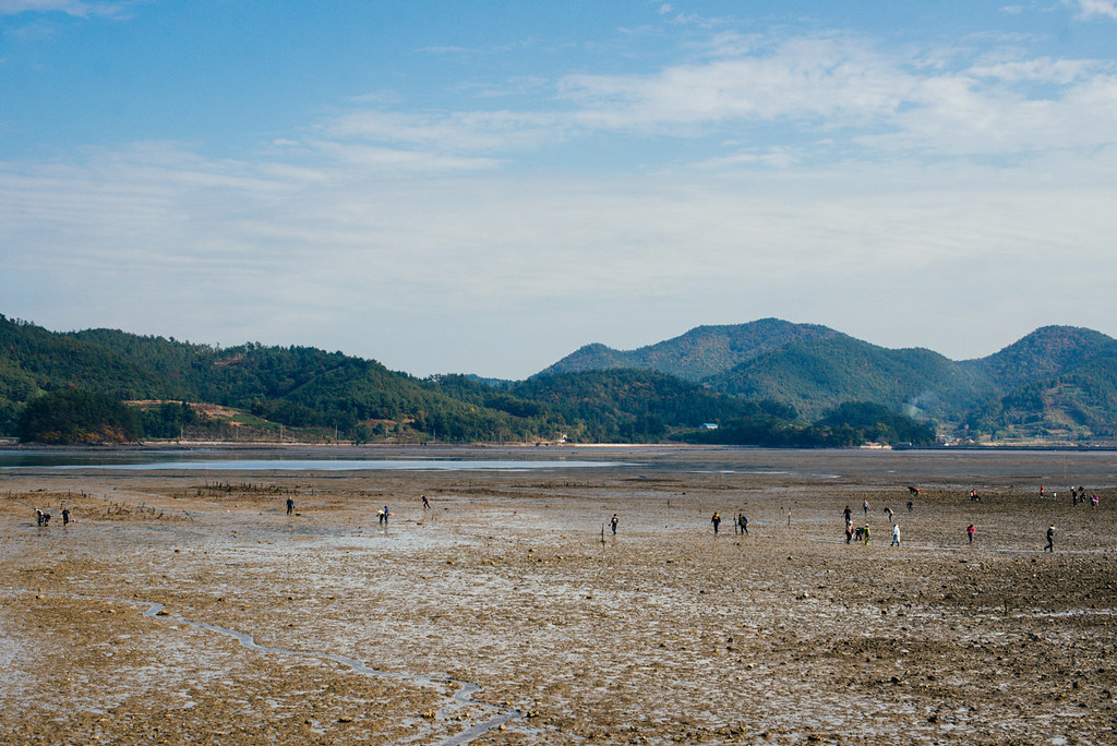 Crabbing in Namhae