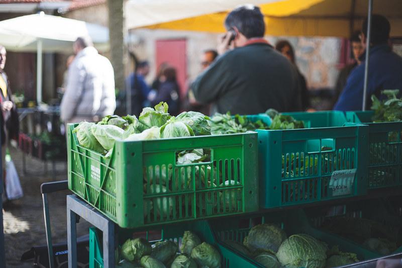 legumes biológicos no mercado do parque da cidade