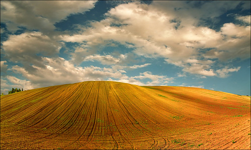 desktop light sunset shadow wallpaper sky orange art fall film nature face up field lines yellow clouds landscape photography photo spring high nikon peace image outdoor serbia paisaje size fantasy valley fields resolution agriculture paysage ova vojvodina srbija srem katarinastefanovic katarina2353 serbiainspired