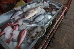 Świeże ryby do wyboru przed restauracją