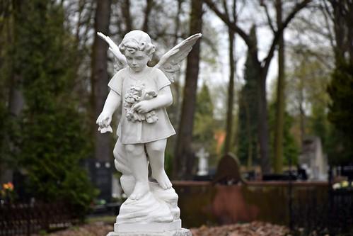 starycmentarzwłodzi theoldcemeteryinłódź cemetery graveyard angel łódź lodz polska poland