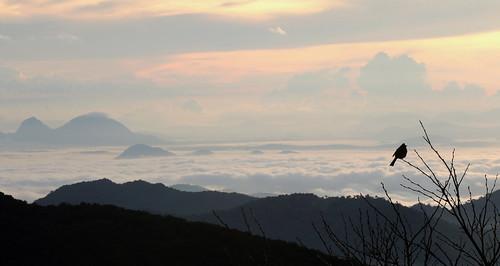 srilanka rangala rangalahouse sunrise sunset sun orange sky cloud clouds outdoors