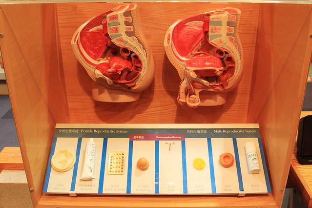 HongKongScienceMuseum7