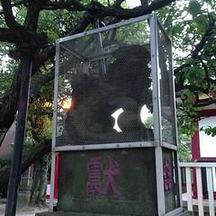 狛犬探訪 南蒲田北野神社 阿吽とも子連れ 背中に乗っけてる