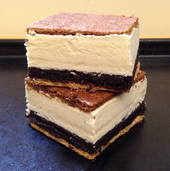 S'mores Brownie Ice Cream Sandwiches with Toasted Marshmallow Ice Cream