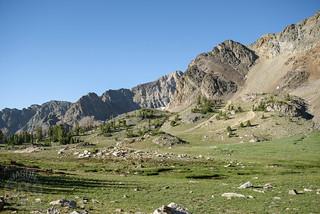Topmost meadow