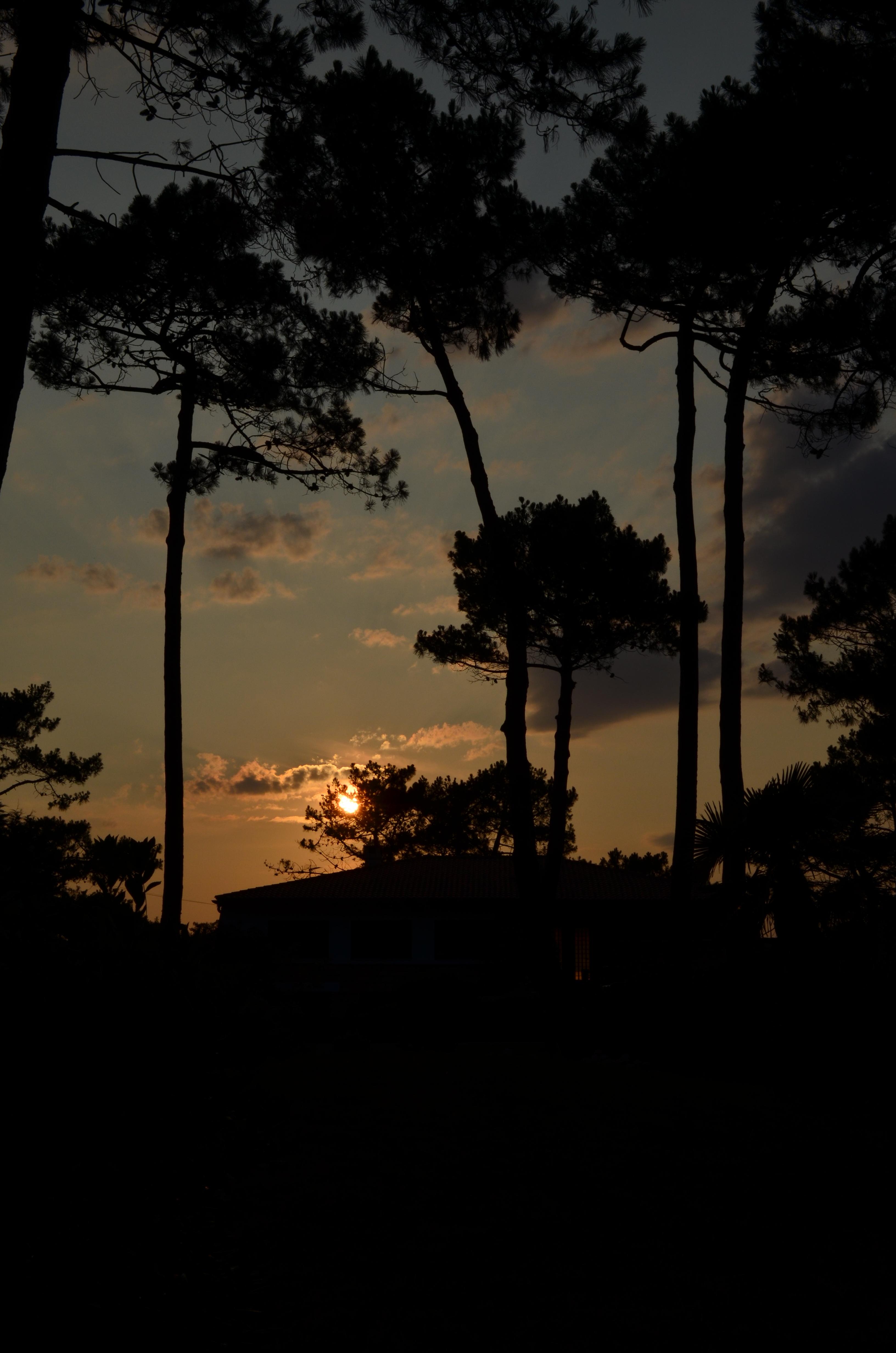 france_pyla_sunset