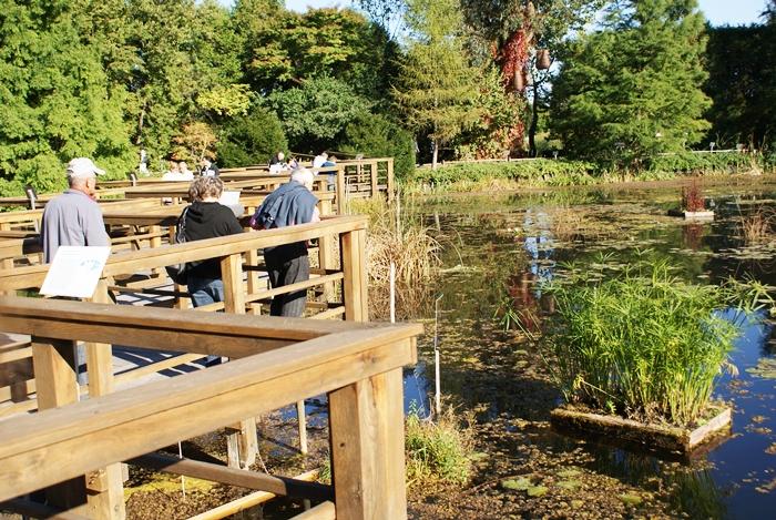 Ogród botaniczny w bolestraszycach fotorelacja zdjęcia