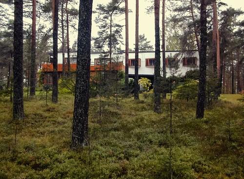 trees house nature architecture forest finland landscape villa aalto mairea architecturephotography archidose archdaily archiref ximomichavila