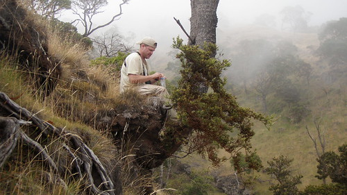 Chris Farmer, our partner with American Bird Conservancy, picking seeds in Nakula NAR.