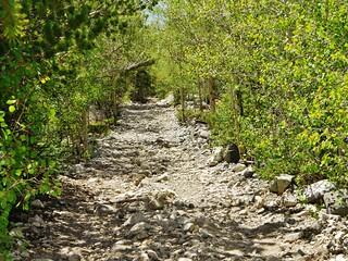 Lake Como Road - 2 hrs 20 minutes - A pretty stretch