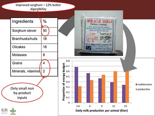 Slide 20: Improve dual-purpise crop-residues for livestock feed