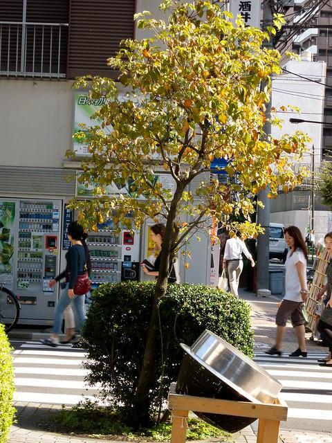 tokyosanpo13108 4 (3)