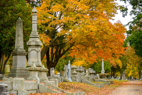 city autumn trees fall cemetery leaves portland nikon maine newengland graves foliage portlandmaine deering evergreencemetery d600