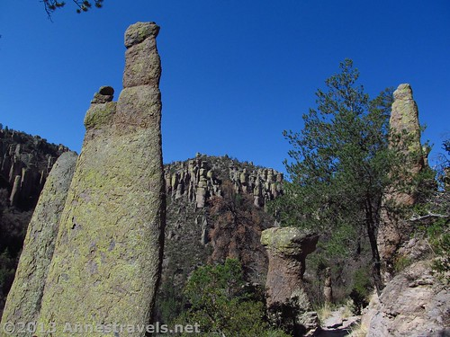 Tall spires on the Ed Riggs Trail, Chiricahua National Monument, Arizona