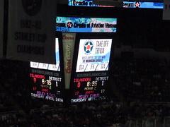 Detroit Red Wings vs. New York Islanders - November 29, 2013