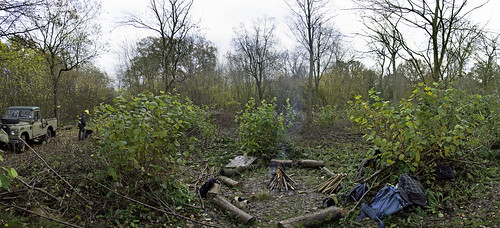 Bulls Wood Panoramic