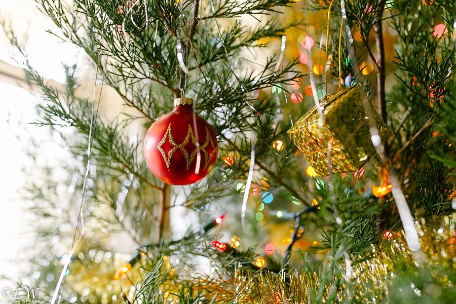 christmas 2013 (236 of 327)