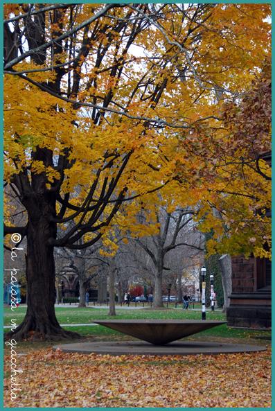 NJ-Princeton-2