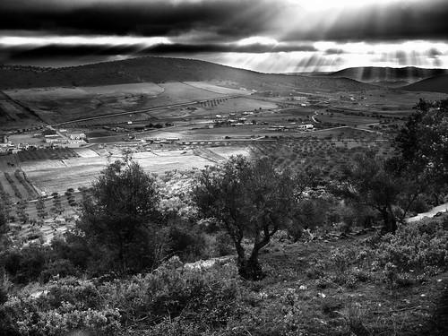 Paisaje en blanco y negro by Stoned59