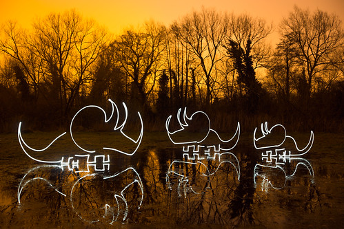Resinite (Amber Triceratops Light Painting), Rickmansworth by flatworldsedge