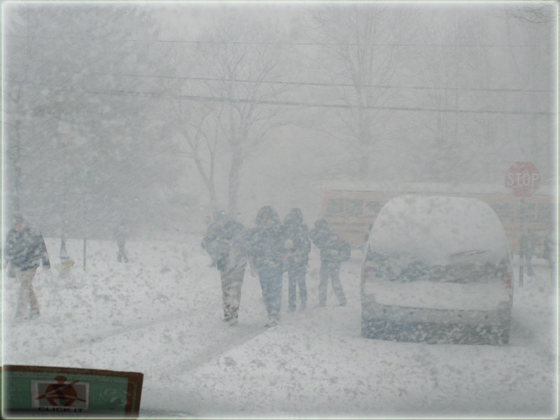 ~ snow day...