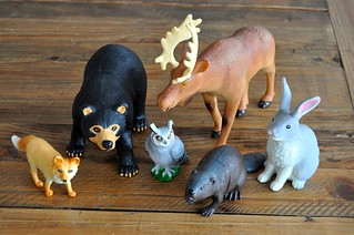 Forest Animals Exploration with Figures