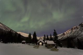 Beneath the Northern Lights