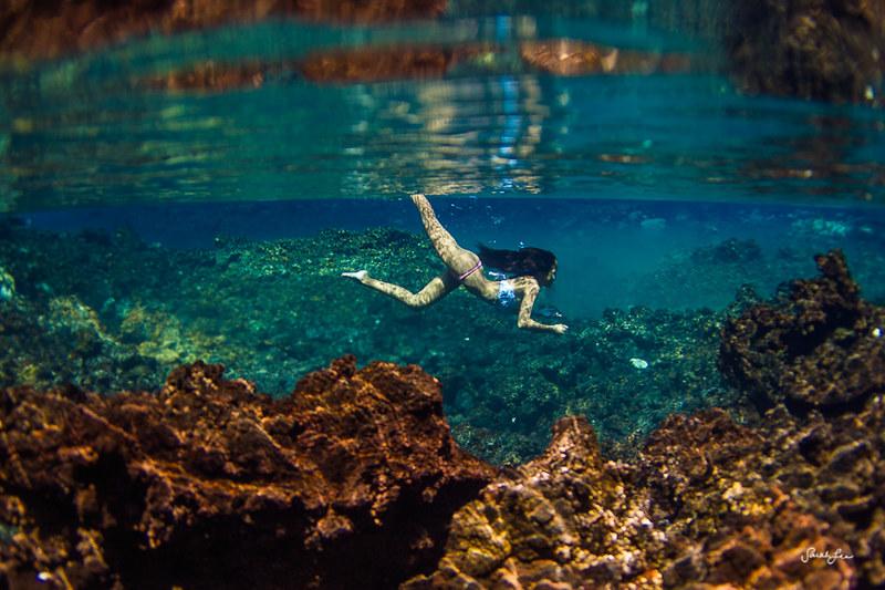sarahlee_freshwater_pond_hawaii.jpg
