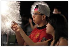 Giant Dandelions: i Light Marina Bay 2014, Singapore